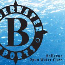 Bellevue Open Water