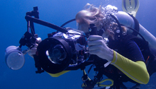 Photography Scuba Lessons