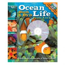 Ocean Life from A to Z