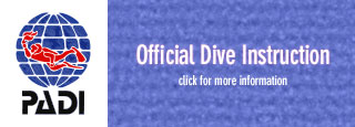 PADI official Dive