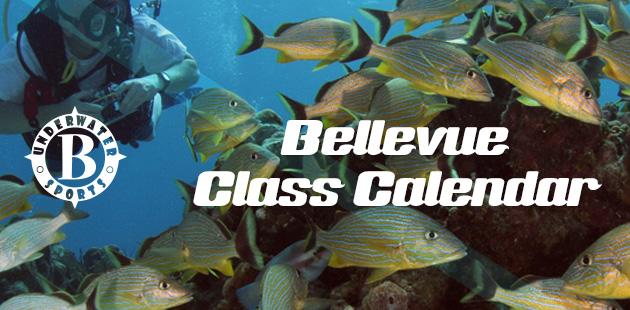 Bellevue Calendar Banner - Bellevue Scuba lessons