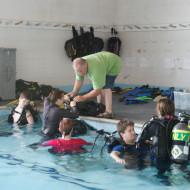 Diver Fair 37