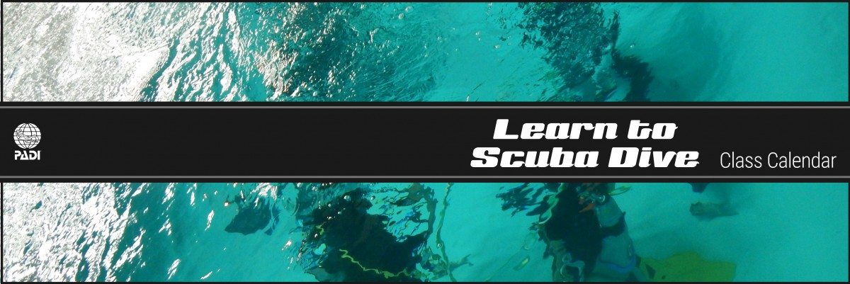 Learn To Scuba Dive - Seattle Underwater Sports