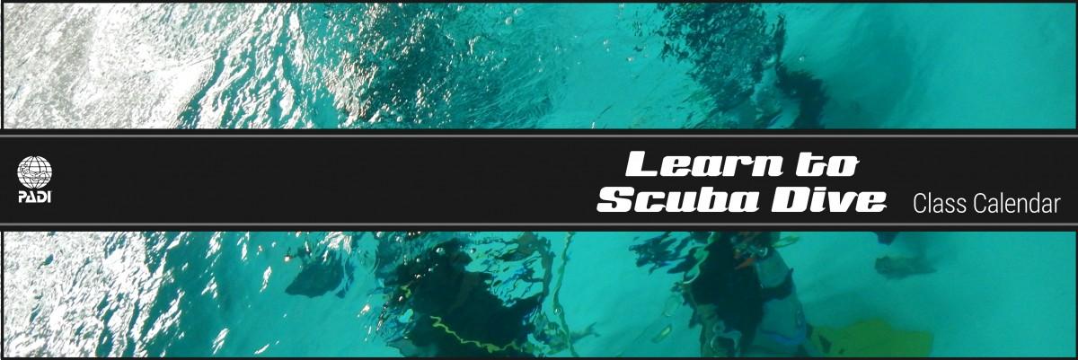 Learn To Scuba Dive - Seattle Underwater Sports