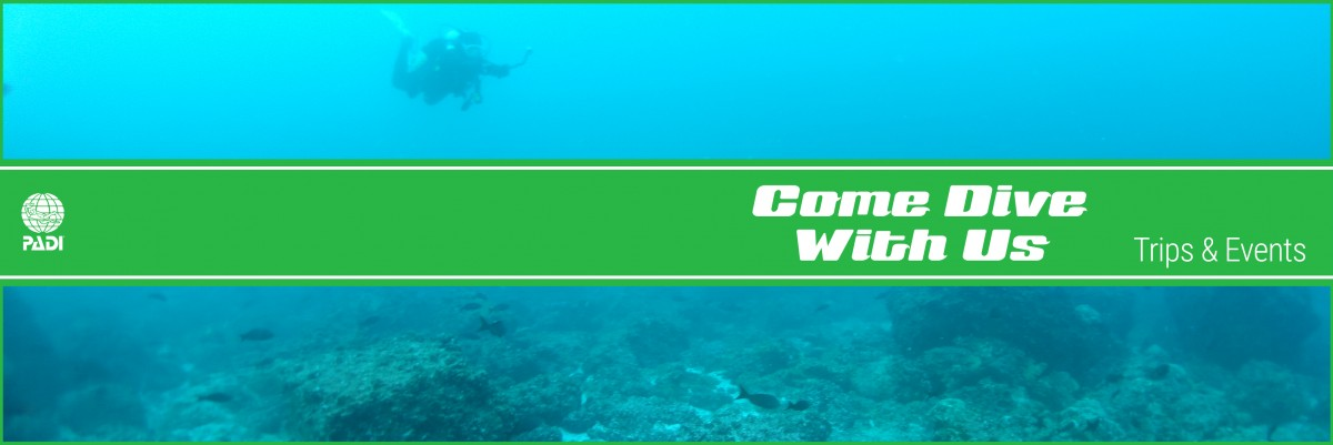 Learn To Scuba Dive - Seattle Underwater Sports - Dive Trips Tropical